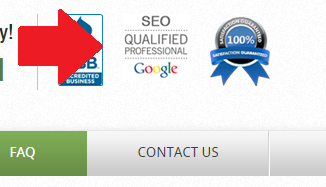 Google SEO Qualified Professional